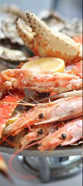 Crab Market Dubai website portfolio